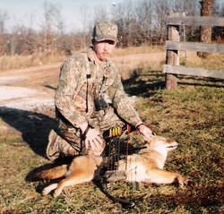 David, coyote