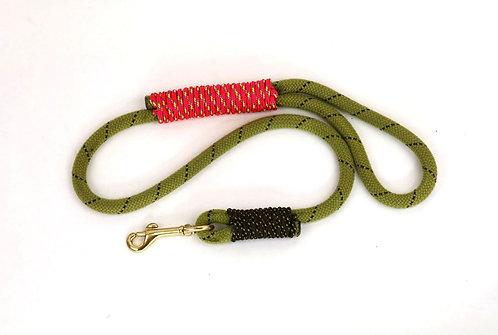 2 ft leash, Rope: Baby Lloda