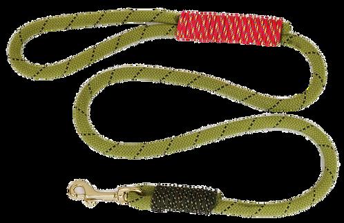 5 ft leash, Rope: Baby Lloda