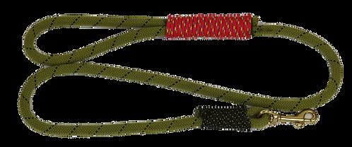 4 ft leash, Rope: Baby Lloda