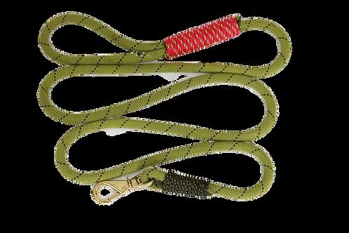 6 ft leash, Rope: Baby Lloda