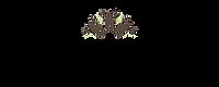 JunglePotLogo_500x200_Website_GreenMaker