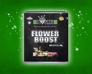FlowerBoost_Banner_Biogreen_Plant_Nutrie