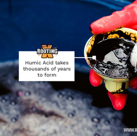 How to Use Humic Acid in Plants and it's Benefits