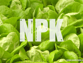 The Meaning of NPK - Plant Nutrition and Deficiencies