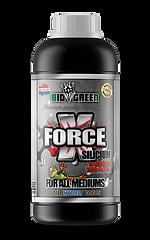 Biogreen_UK_Nutrients_XForce_1L.png