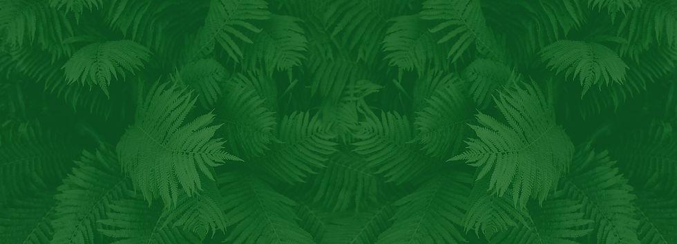 plants background.jpg