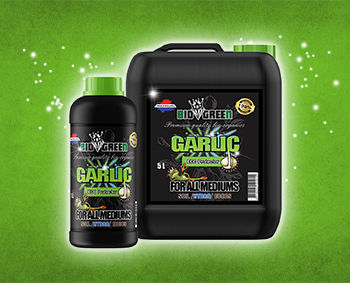 Garlic_Banner_Biogreen_Plant_Nutrients.j