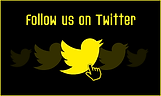 website Button Twitter (with border)3.pn