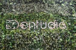 Dentudio Dentists Richmond BC
