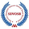 MPM SDVOSB icon.jpg