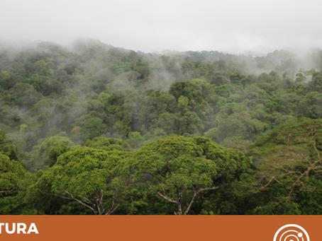 La Reserva Biológica Indio Maíz: un tesoro natural que estamos perdiendo