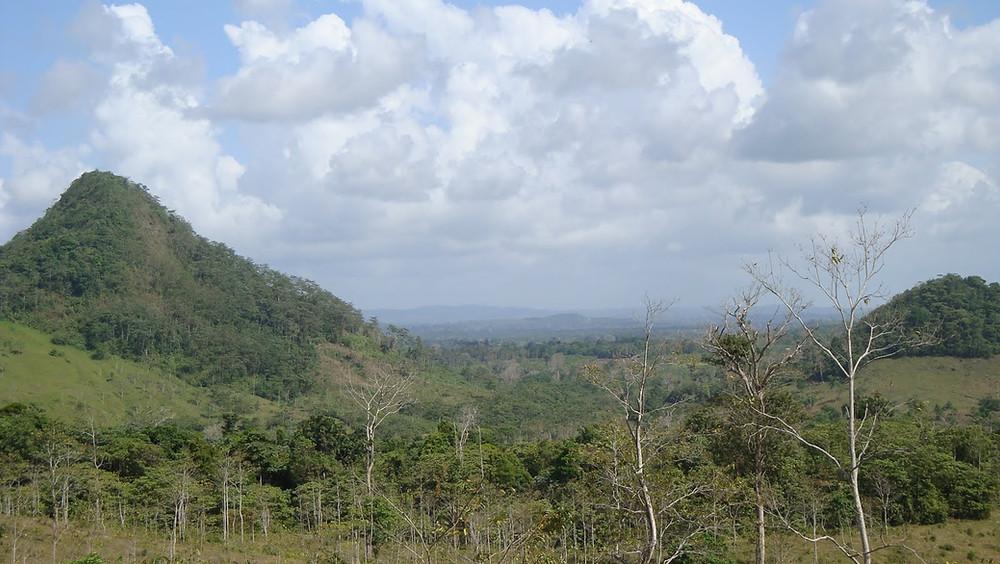 Acaparamiento de tierras, un atentado medioambiental