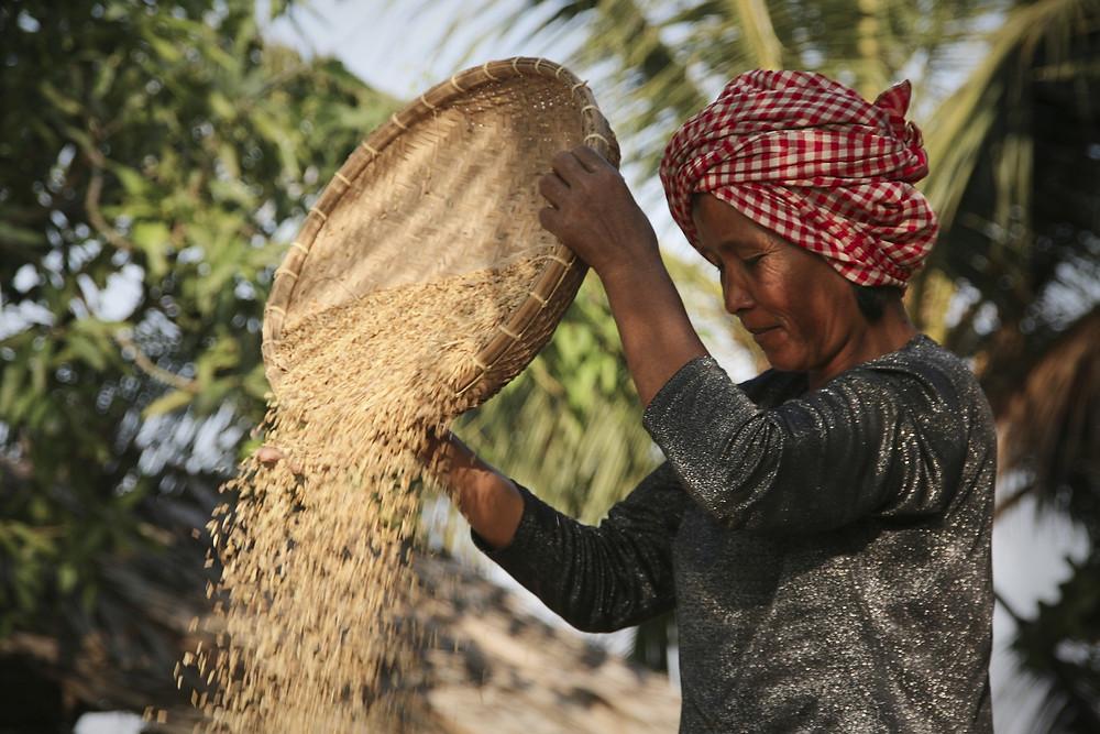 La soberanía alimentaria, sobre todo en los países más pobres de la región, debe ser prioridad para los Gobiernos - Fotografía de la ONU