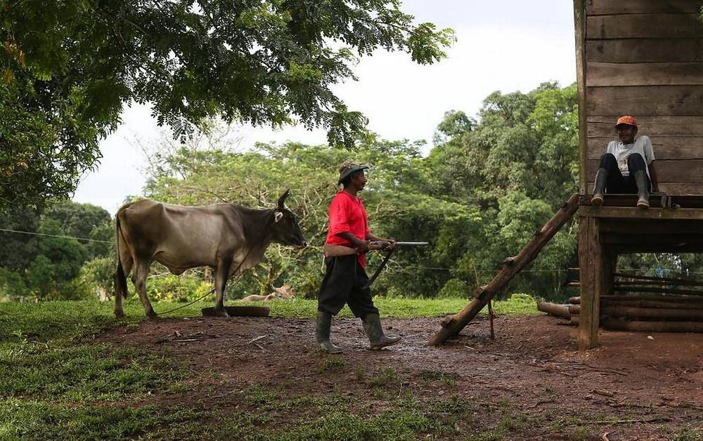 """""""Un misquito patrulla La Esperanza, una comunidad indígena en Río Coco, Nicaragua (Oswaldo Rivas - NYT / El Nuevo Herald)"""