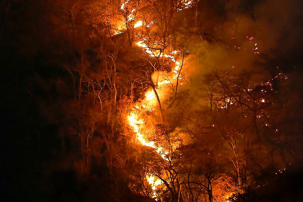 ¿Por qué seguirá ardiendo la Amazonía?