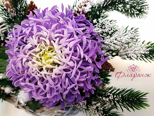 Игольчатая хризантема на заказ