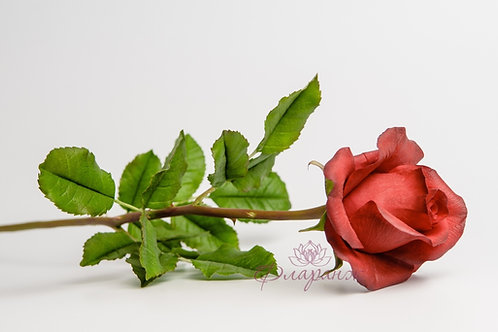 "Страстная роза ""Валентино"""