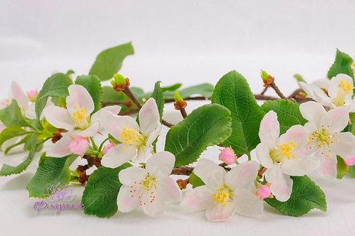 Венок из нежных цветов яблони