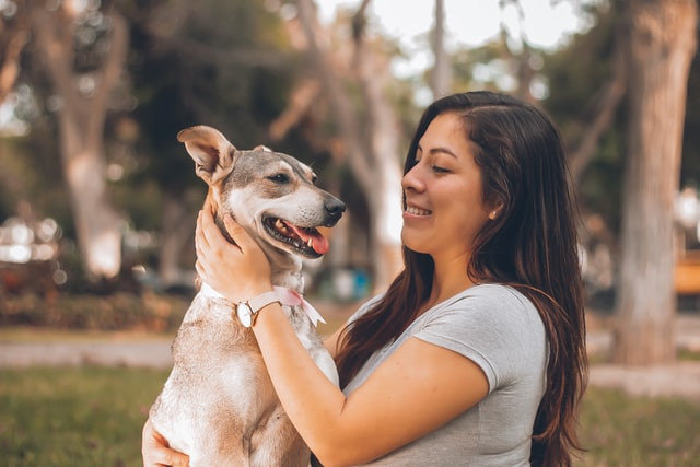 People, Pets and Stress