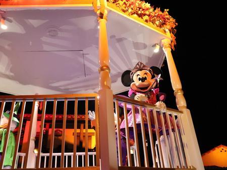Thrills and Chills at Walt Disney World