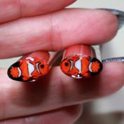 Clown fish murrini