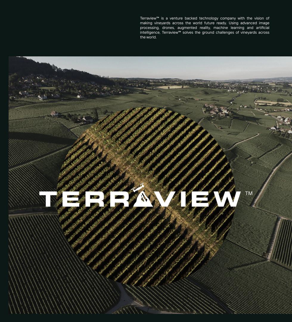 Terraview #6.jpg