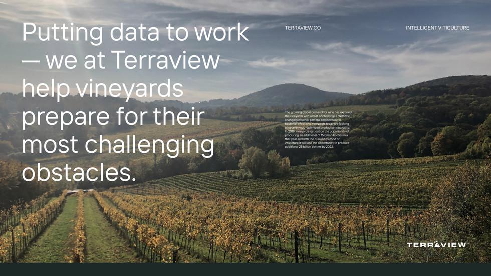 Terraview #7.jpg