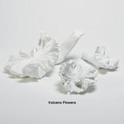 Volcano Flower Set in White