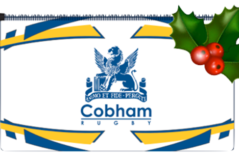 Cobham Rugby Ball Pencil Case
