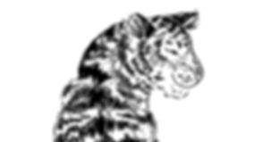 tiger_navy_print_edited.jpg