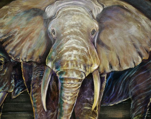 Trinity Baptist  Noahs Ark Animals  16.j