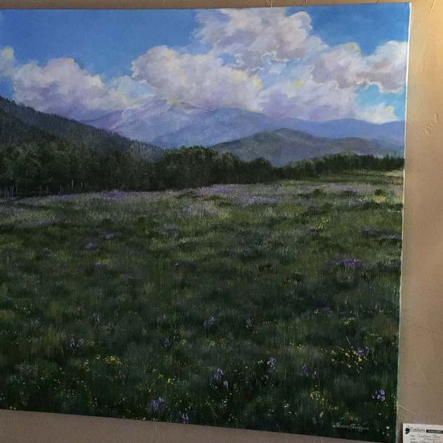 Cuchara Pass Meadow 36X36 $1800.jpg