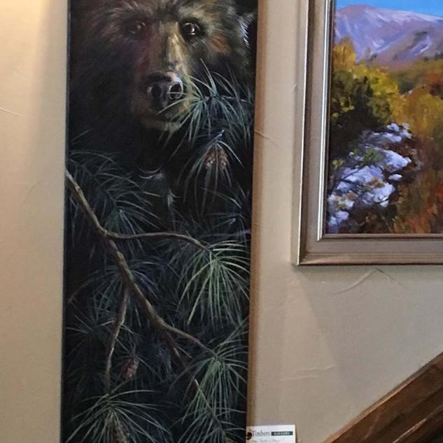 Peak a Bear $400.jpg