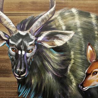 Trinity Baptist  Noahs Ark Animals  20.j