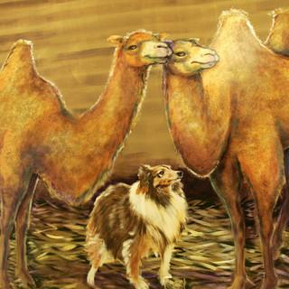 Trinity Baptist  Noahs Ark Animals  25.j