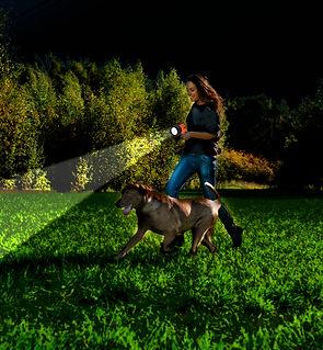 SL3AKB_dog_walk.jpg
