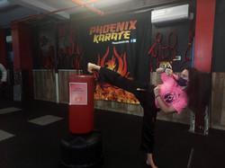 karate%20kick_edited
