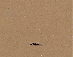 Zaugg_Umschlag.jpg