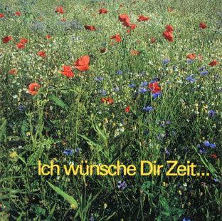 ICH WÜNSCHE DIR ZEIT - Hans Zaugg