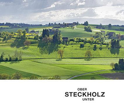 Steckholz