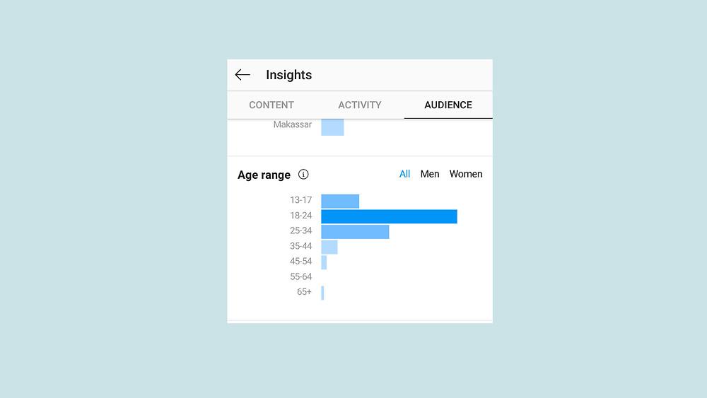 insight instagram bisnis