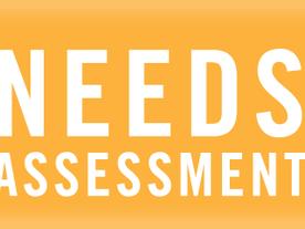 NPE SCHOOL COUNSELOR NEEDS ASSESSMENT