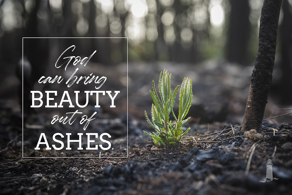 God can bring beauty out of ashes