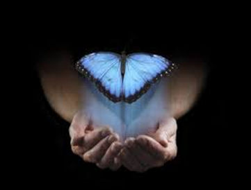 butterfly and hands.jpg