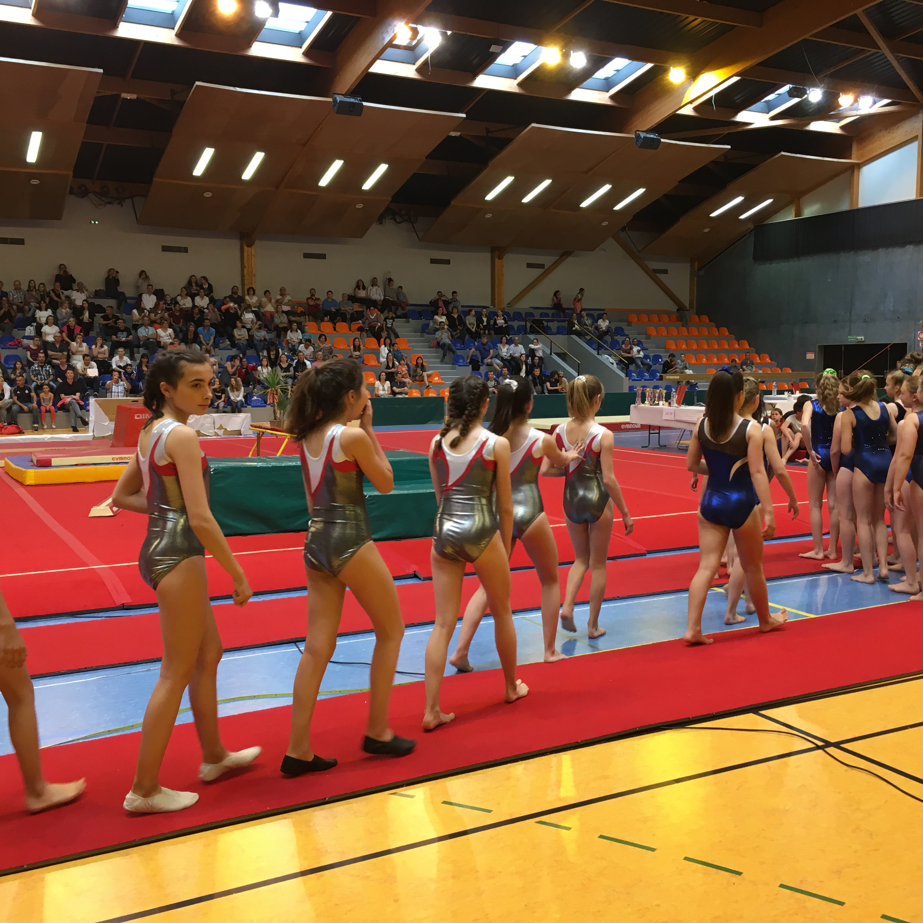 Thouars Gym 79 Journees Evenements Saison 2016 2017