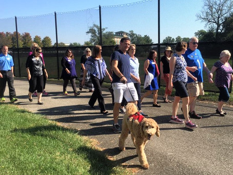 Doctors lead walks to help promote healthy habits