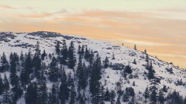 DEAD OF WINTER (2019)  Short Film  Drama