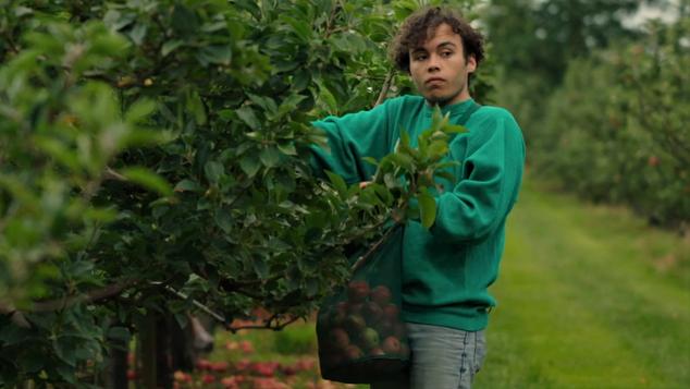 APPLES (2017)  Short Film  Drama