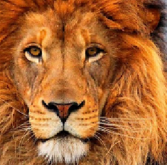 lionmosaic.PNG